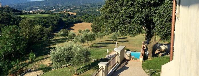Tenuta Di Rota is one of Lugares favoritos de Babbo.