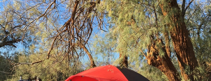 Furnace Creek Campground is one of Lugares favoritos de Frau S..