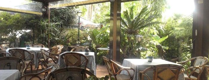 Bar Calise is one of Naples, Capri & Amalfi Coast.
