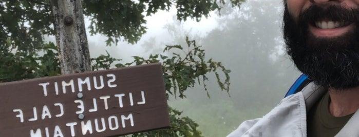 Calf Mountain Overlook is one of VA.