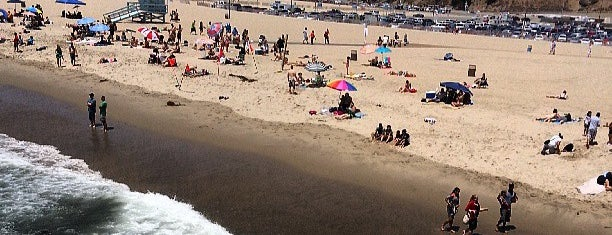 Santa Monica State Beach is one of Locais salvos de Barrett.