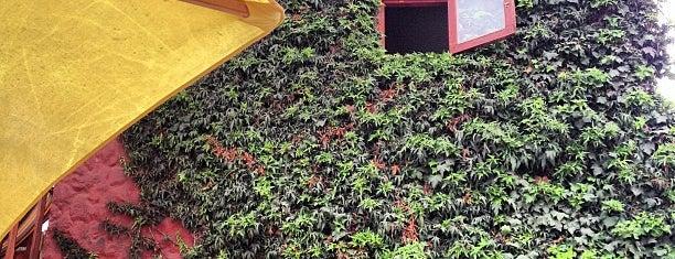 Hostel El Punto is one of Lugares guardados de Constanza.