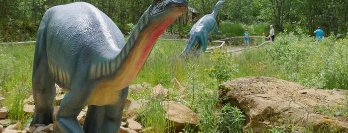 Dinosaurierpark Teufelsschlucht is one of Around Rhineland-Palatinate.
