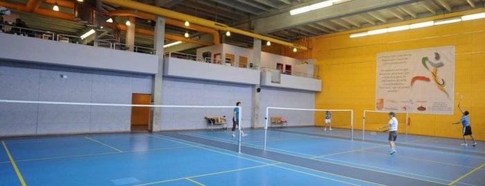Centre de Badminton Lausanne is one of Lieux qui ont plu à David.