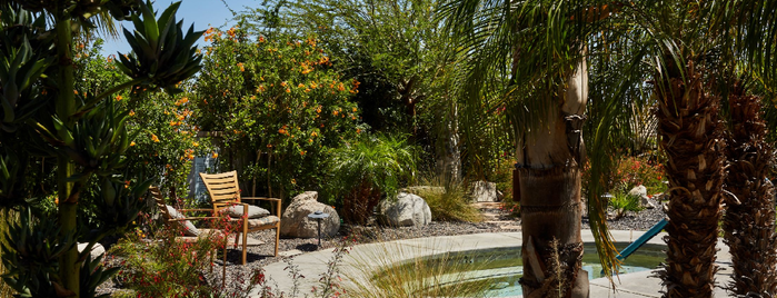 The Spring Resort & Spa is one of Joshua Tree New Years.