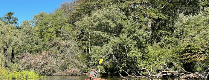 Peconic Paddler is one of Labor Day Week.