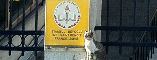 Saint Benoît Fransız Lisesi is one of Beyoğlu Liseleri.