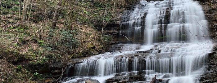 Pearson's Falls is one of Charlotte, North Carolina.