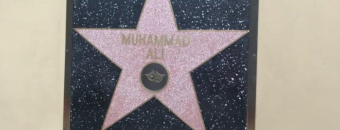 Muhammad Ali's Star is one of LA Trip.