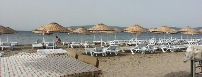 Çiko Beach is one of Locais curtidos por Deniz.