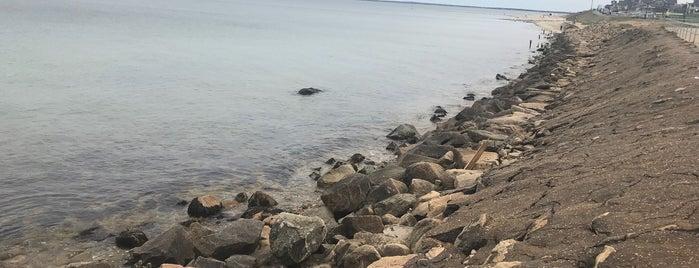 Oak Bluffs Beach is one of Orte, die Erica gefallen.