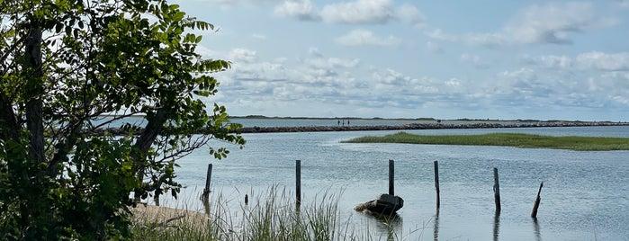 Pilgrims' First Landing Park is one of Lugares favoritos de Lori.