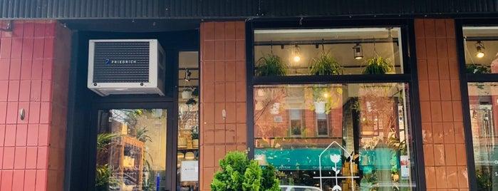 PlantShed Cafe is one of Lugares favoritos de Lori.
