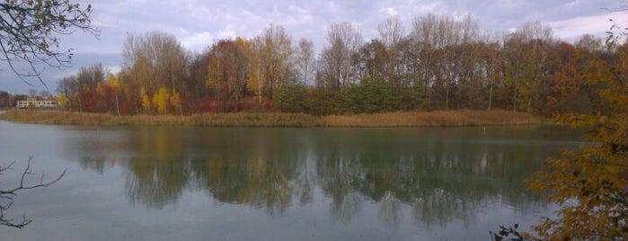 Озеро «Наварія» is one of Lviv. Nature.