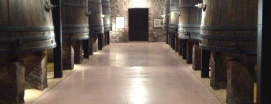 Bodegas Franco Españolas is one of Rioja wineries.