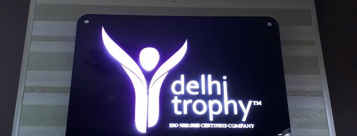 DELHI TROPHY.COM is one of Lugares guardados de Nataly.