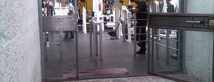 Haro Gym is one of Tempat yang Disimpan Corasoun.
