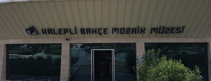 Haleplibahçe Mozaik Müzesi is one of Merve'nin Beğendiği Mekanlar.