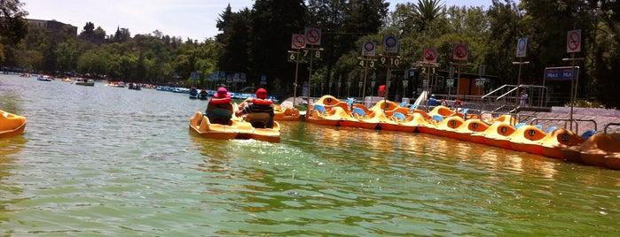 Lago Mayor is one of Ciudad de México y alrededores.