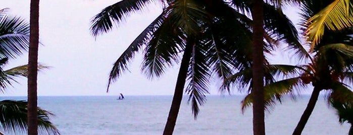 Negombo Beach is one of Great World Outdoors and Spots.