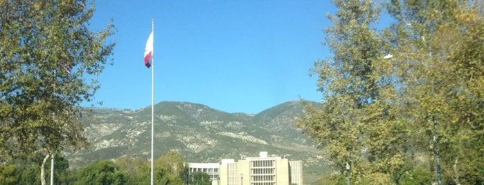California State University, San Bernardino is one of CSUSB.