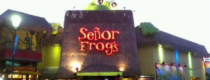 Señor Frog's is one of Favorite Nightlife Spots.