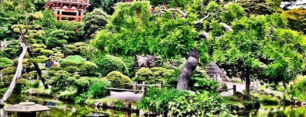 Japanese Tea Garden is one of 72 hours in San Francisco.