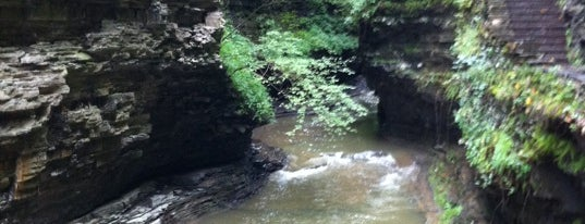 Watkins Glen State Park is one of Fingerlakes Transport an Tour Service.