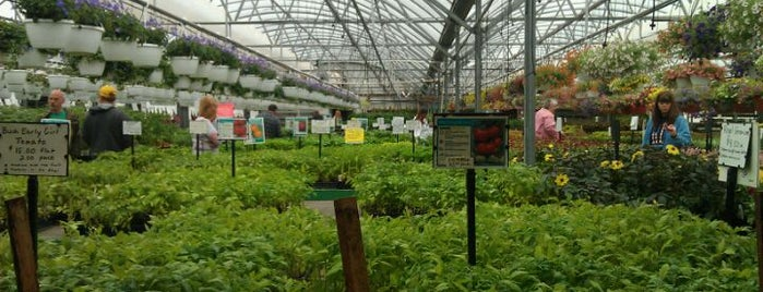 Janoski's Farm And Greenhouse is one of Lieux qui ont plu à Lauralynn.