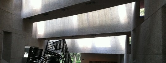 Museo Tamayo is one of 101 Mexico City musts!.