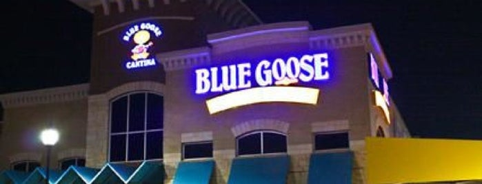 Blue Goose Cantina is one of Roanna 님이 좋아한 장소.