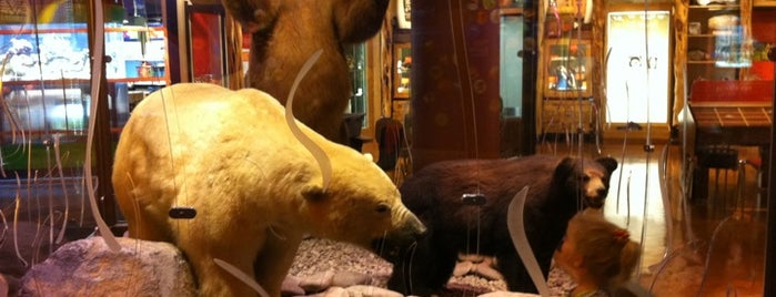 Discovery Place is one of Best Places to Check out in United States Pt 1.