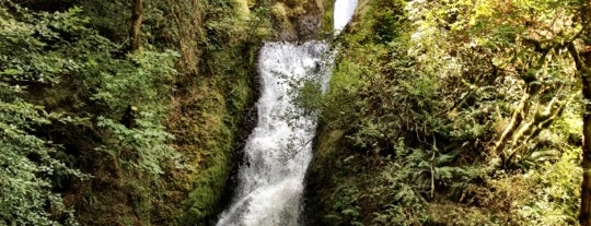 Bridal Veil Falls is one of Portland/Oregon.