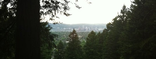 Mt. Tabor Park is one of Portland!.