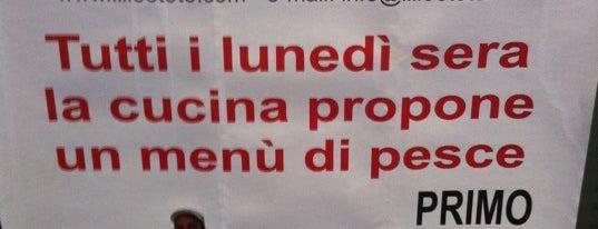 Pizza a Ravenna (e provincia)