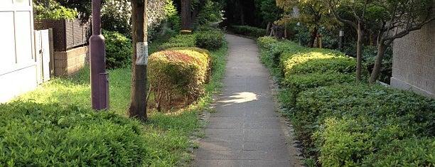 蛇崩川緑道 is one of せたがや百景 100 famous views of Setagaya.