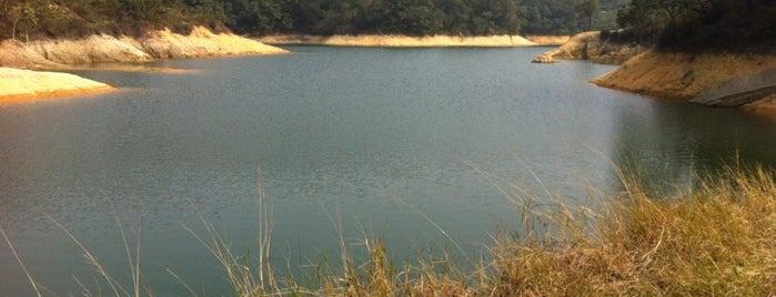 Tai Lam Chung Reservoir 大欖涌水塘 is one of Albertさんのお気に入りスポット.
