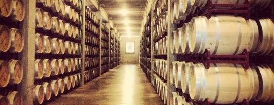 Bodega Marqués de Riscal is one of Premium Zone www.thepremiumclub.es.