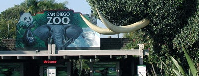 Zoológico de San Diego is one of Arthur's places to visit.