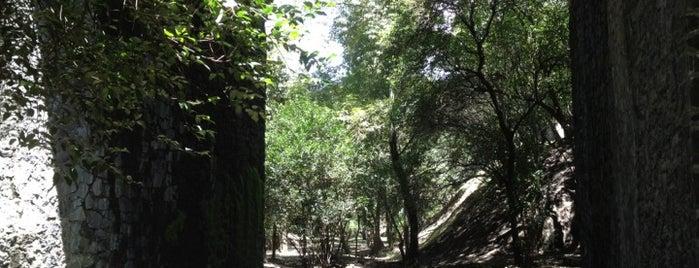 Parque carpatos is one of Lugares guardados de Diego.