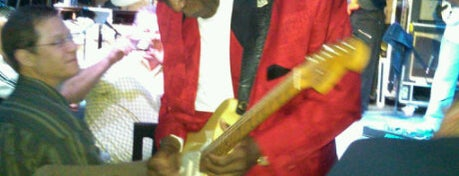 Buddy Guy's Legends is one of Concerts.