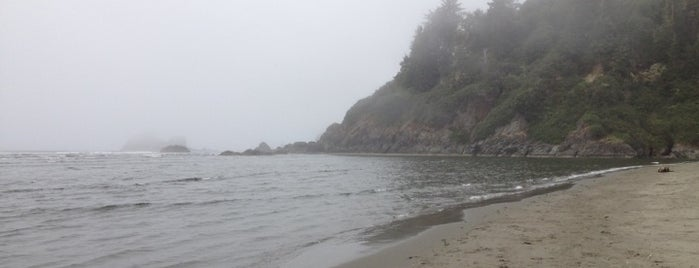 Moonstone Beach is one of Redwood State Park.