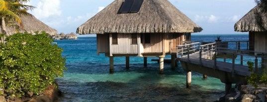 Conrad Bora Bora Nui is one of The Ultimate To Do List.