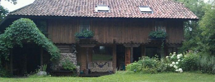 Evelbenki is one of Lugares favoritos de Andra.