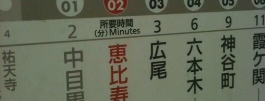 Hibiya Line Ebisu Station (H02) is one of Tokyo - Yokohama train stations.