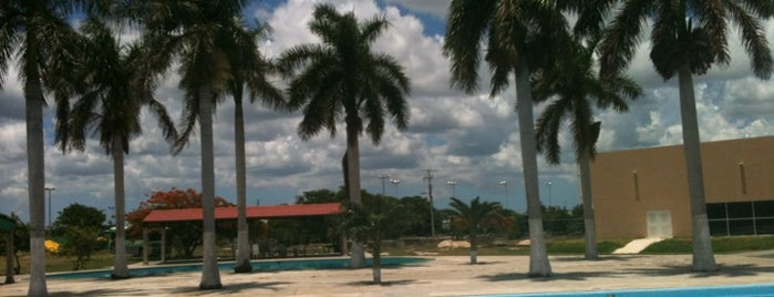 Unidad Deportiva De Telefonistas is one of สถานที่ที่ Rick ถูกใจ.