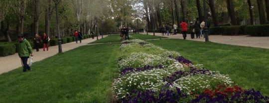 Parque del Retiro is one of Madriz.