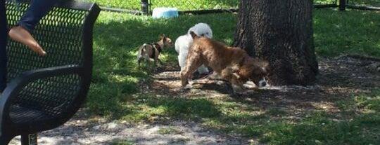 Pompano Dog Park is one of Locais salvos de Wendy.