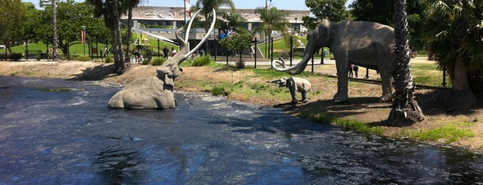La Brea Tar Pits & Museum is one of 2017 City Guide: Los Angeles.