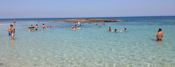 Area Marina Protetta di Torre Guaceto is one of สถานที่ที่บันทึกไว้ของ Stefan.